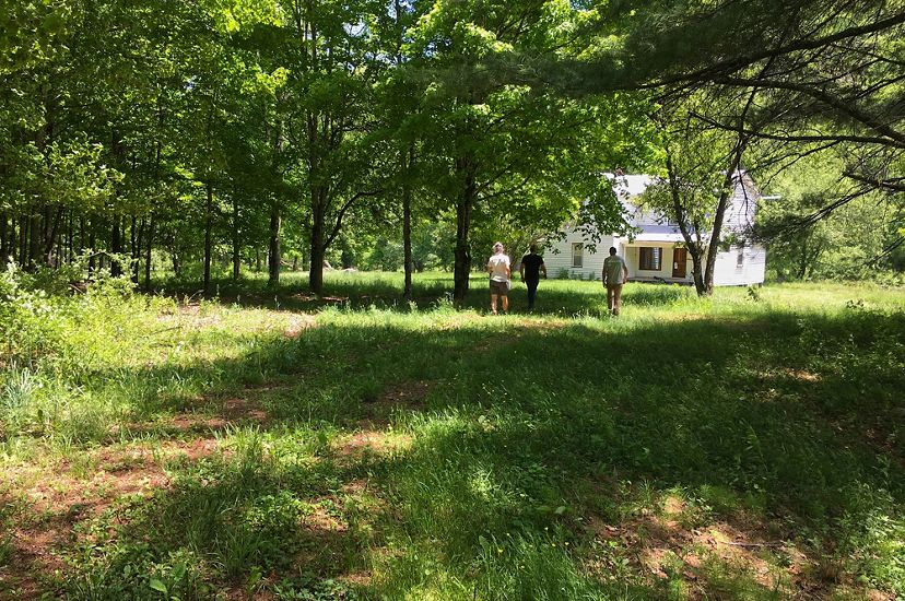 Three people walk towards a white farmhouse nestled in a grove of shade trees.