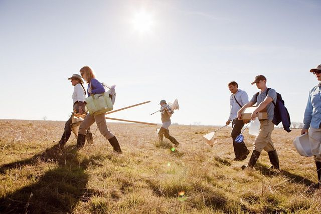 Scientists walking across a field with their gear.