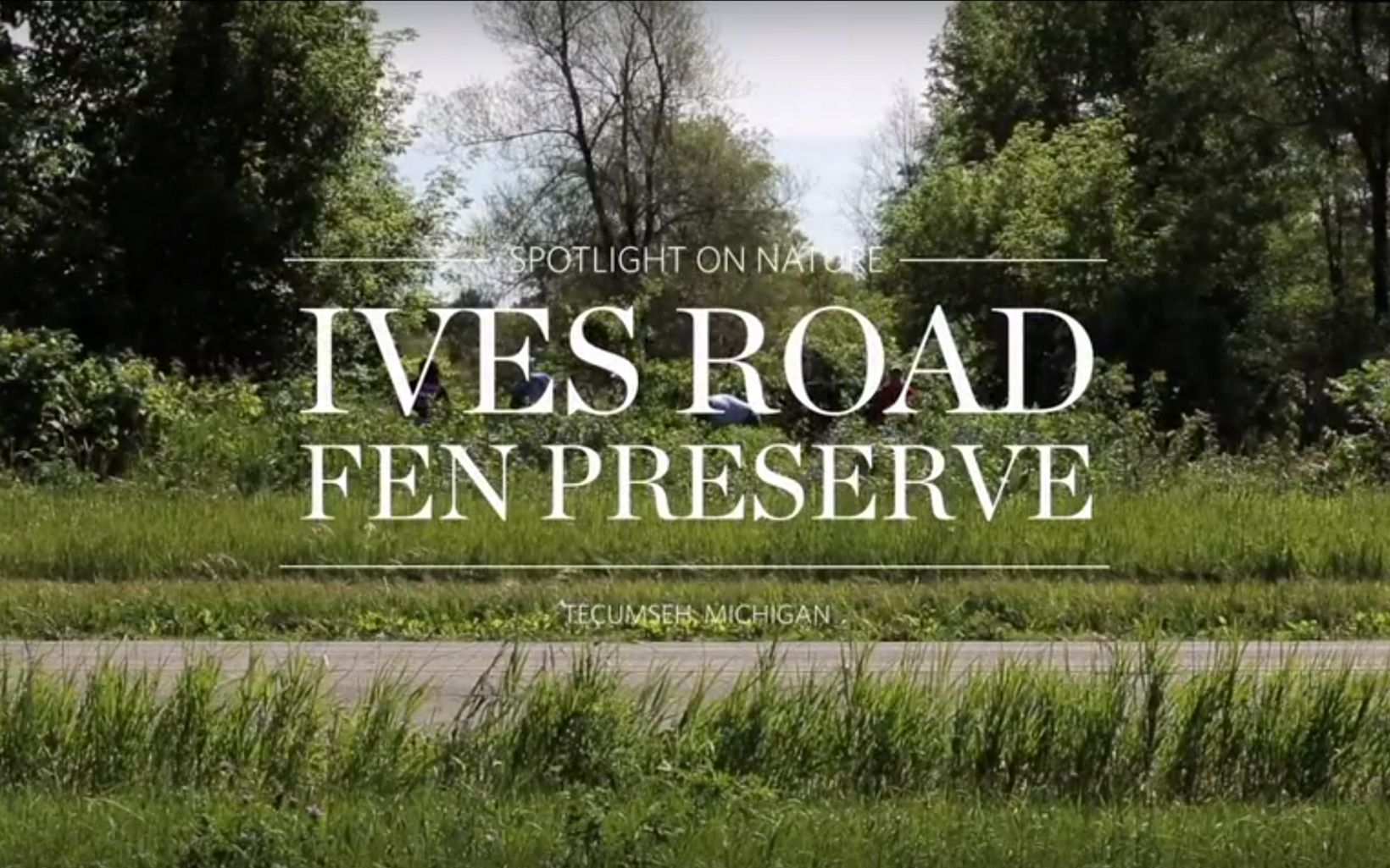 Title card for Spotlight on Nature: Ives Road Fen Preserve video