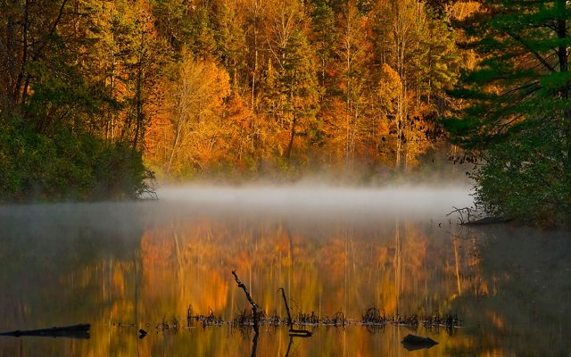 Orange and gold leaves are reflected in a calm, flat creek as white mist rises from the water in the early morning.
