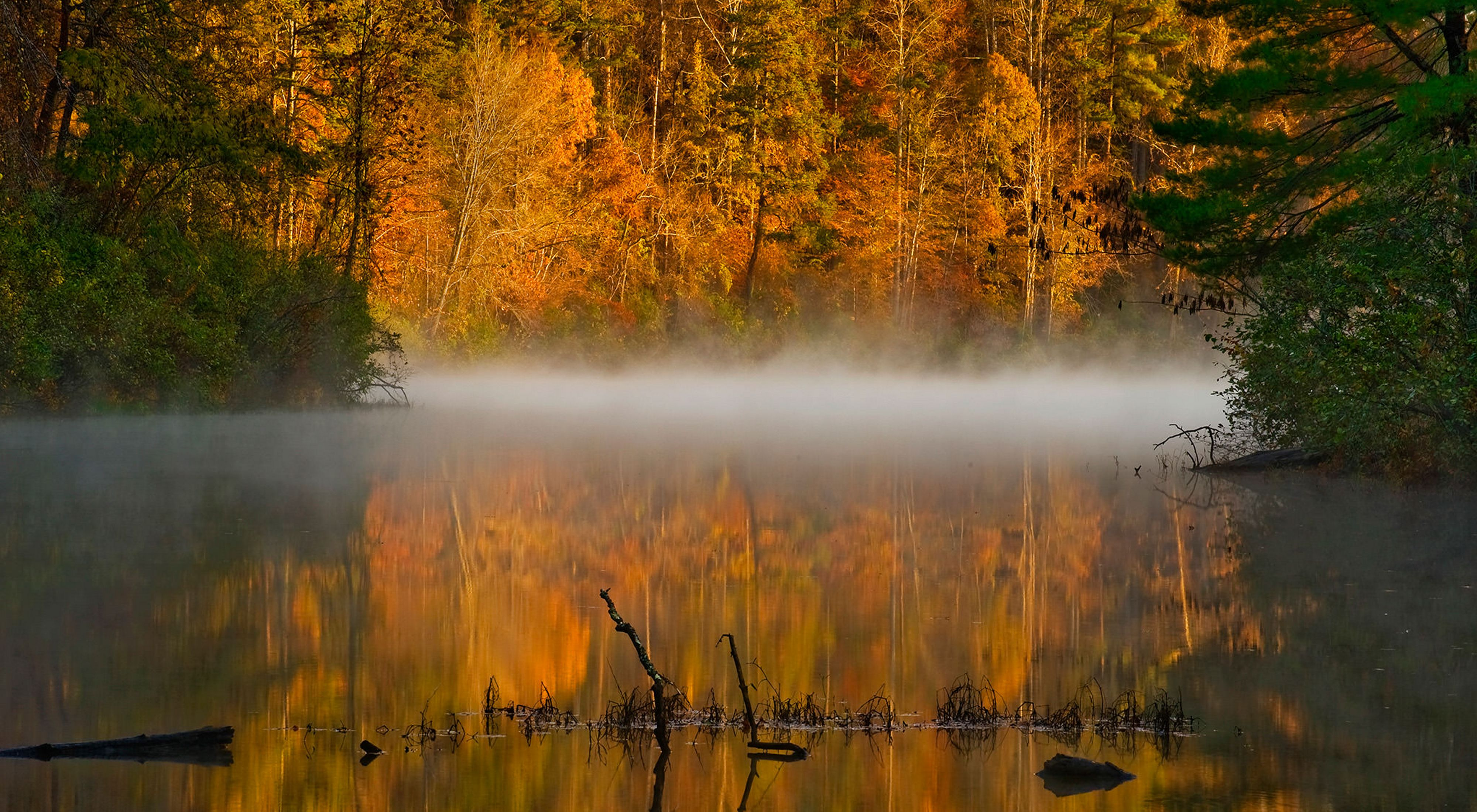 White mist rises over the still water of Virginia's Ivy Creek. The creek banks are lined with tall trees with leaves of gold and orange that are reflected back in the surface of the water.