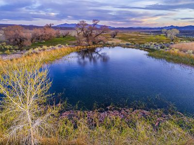 View of the pond at 7J Ranch in Oasis Valley, Nevada