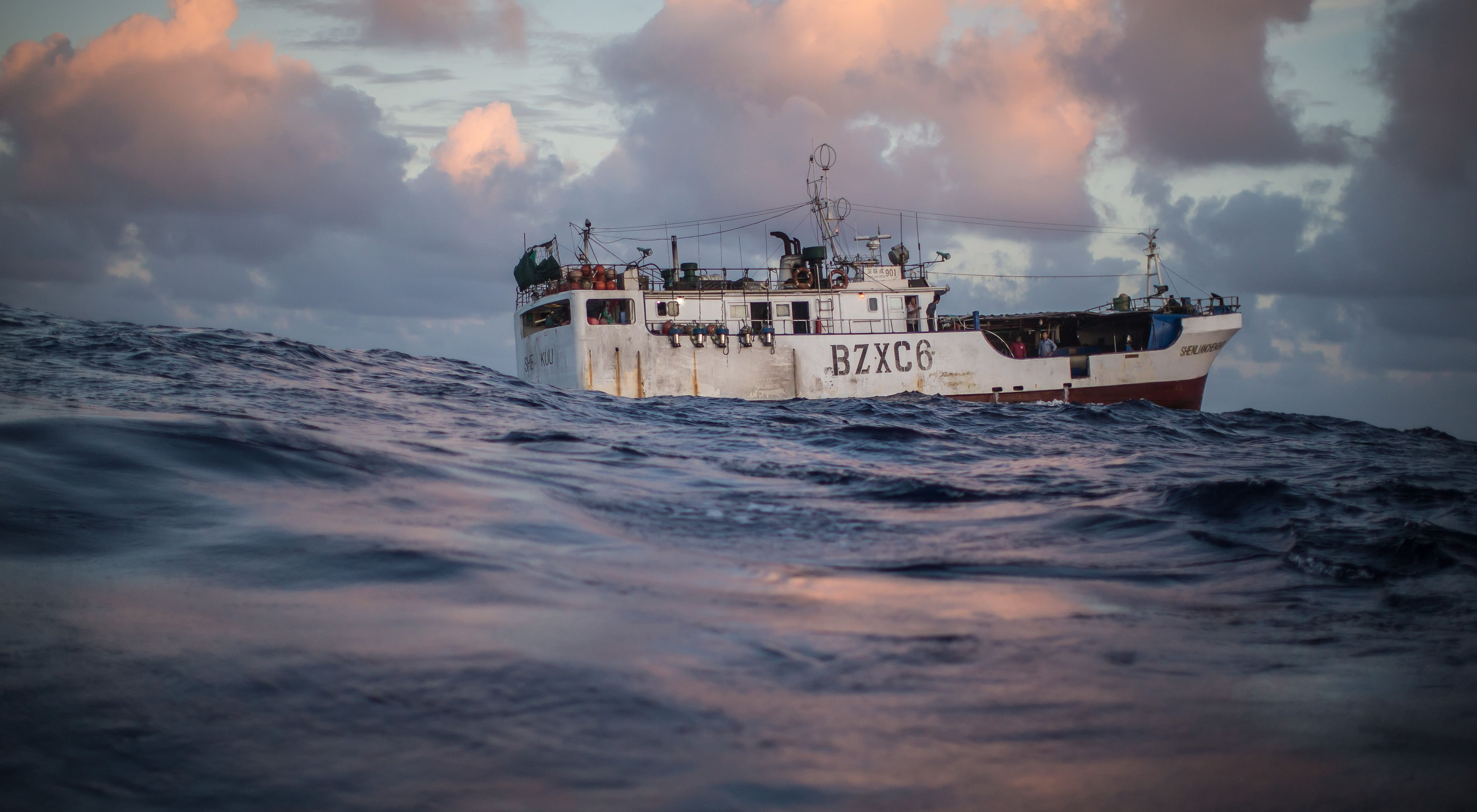 TNC is working with fishermen in Palau to test new fishing practices and methods to reduce bycatch and to sustainably manage the Pacific tuna fishery.
