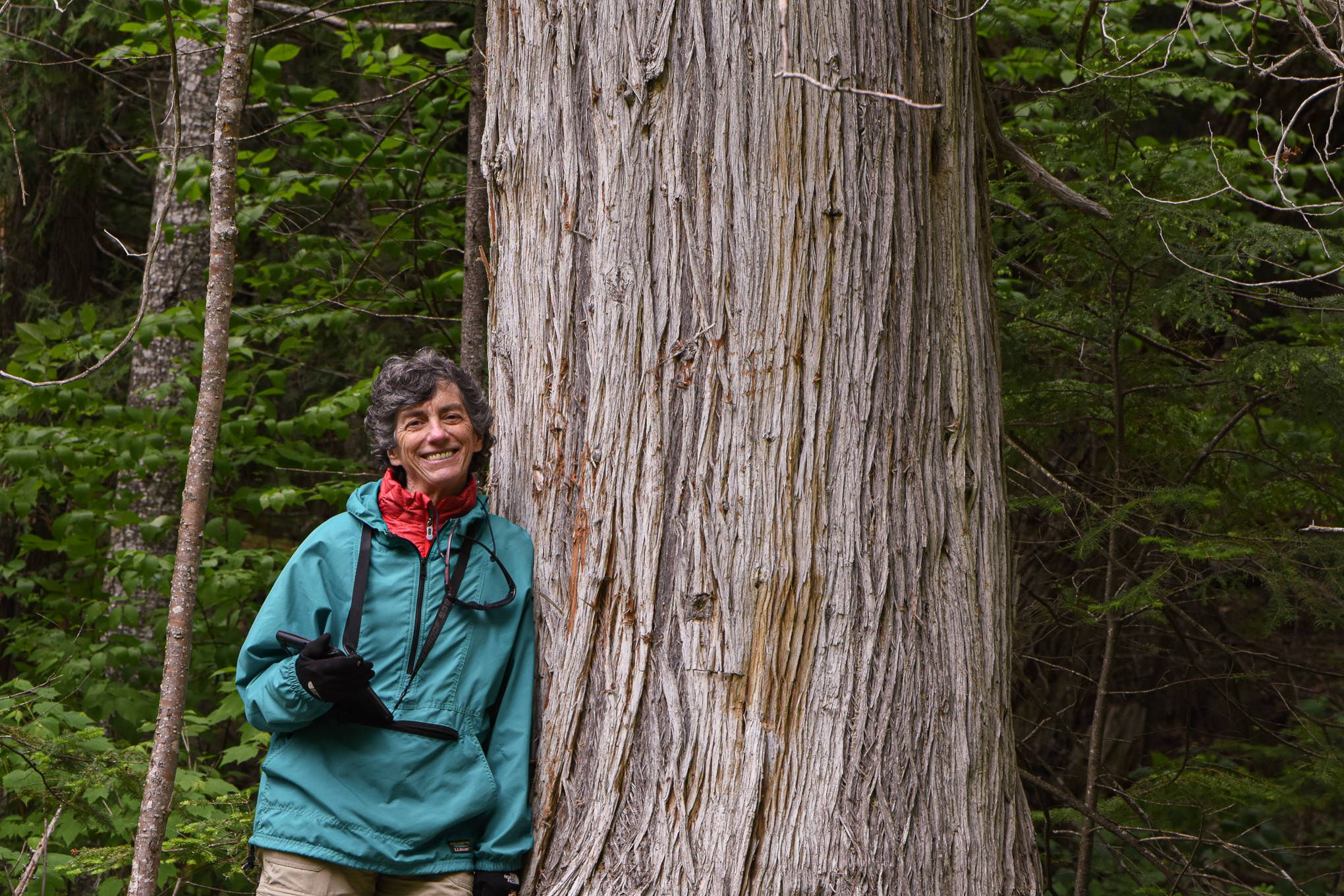 A woman leans against a very large tree.