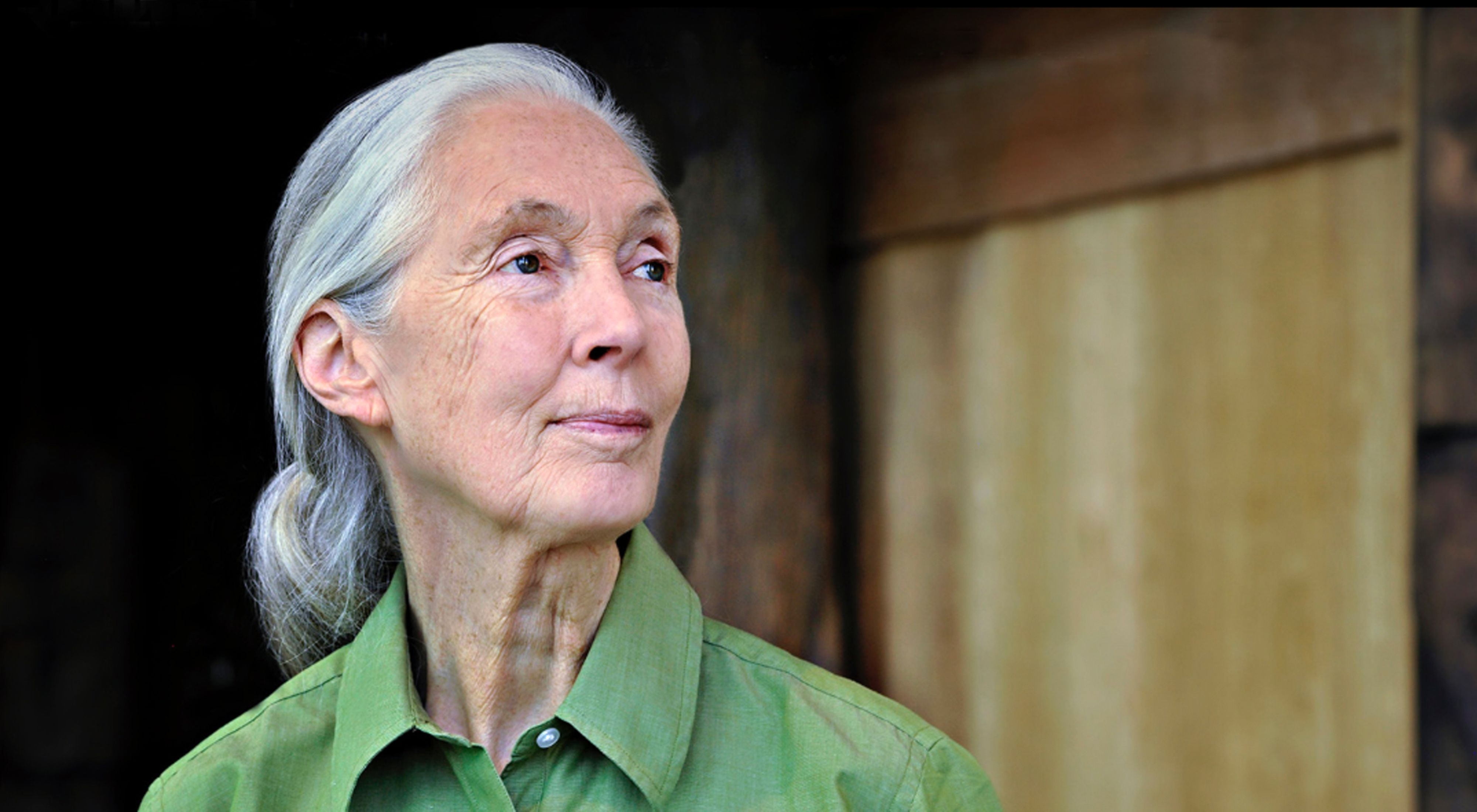 Leading conservationist Jane Goodall