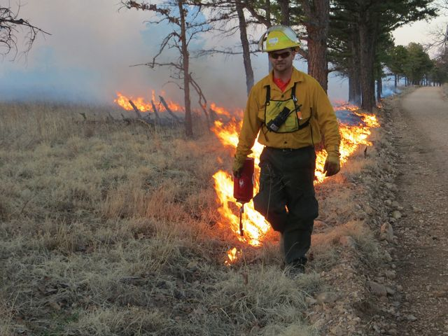 J.T. Nickel Family Nature and Wildlife Preserve Director sets a prescribed fire with a drip torch.