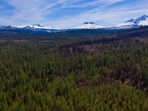 A drone shot of the Deschutes National Forest with a view of the Three Sisters mountain range.