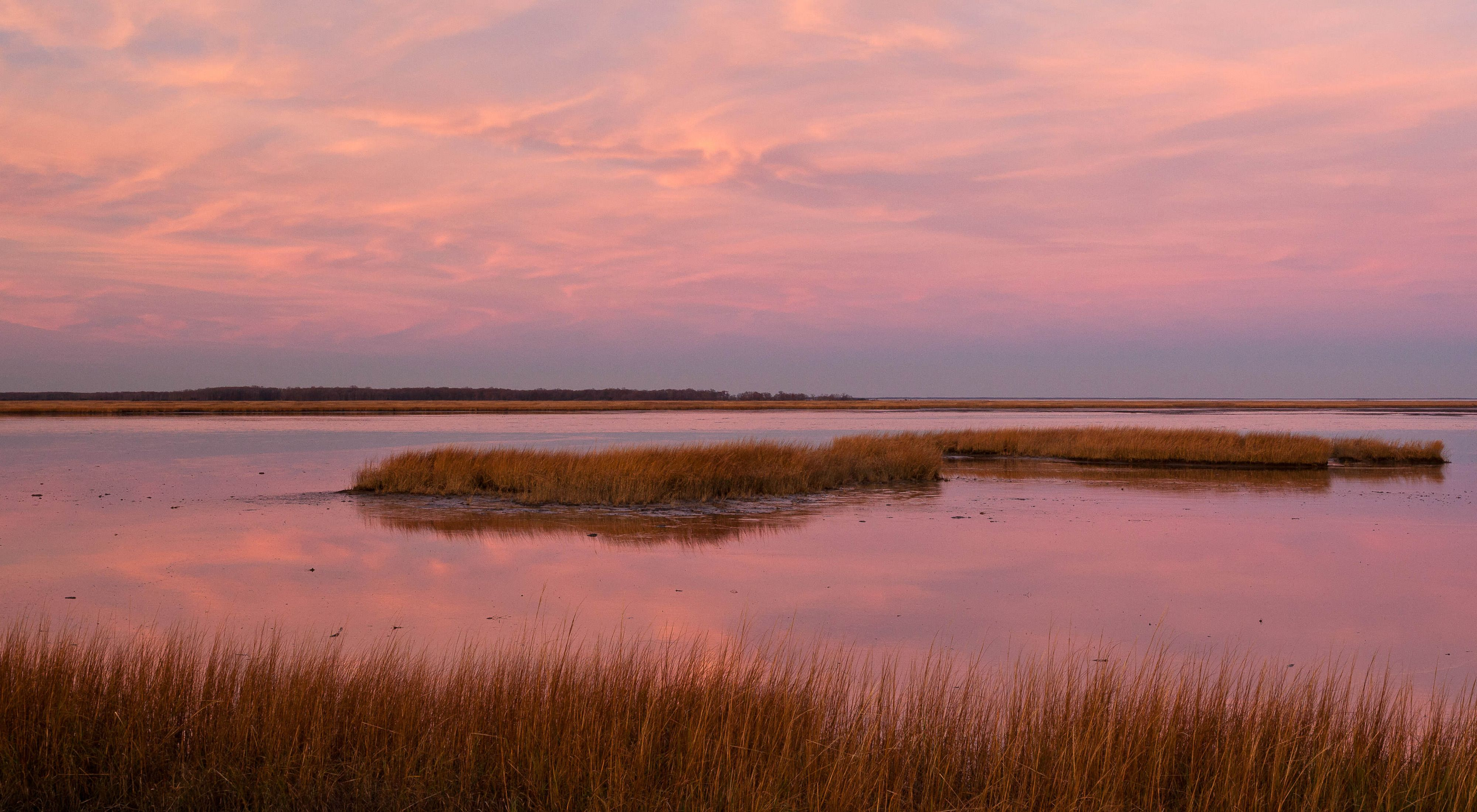 The rising sun bathes a coastal wetland in Maryland in soft pink light. Small islands of marsh grass dot the open water.