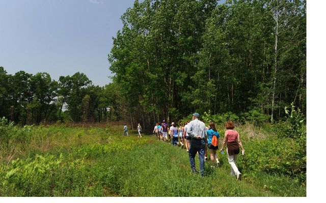 Group Hike at Kitty Todd Preserve