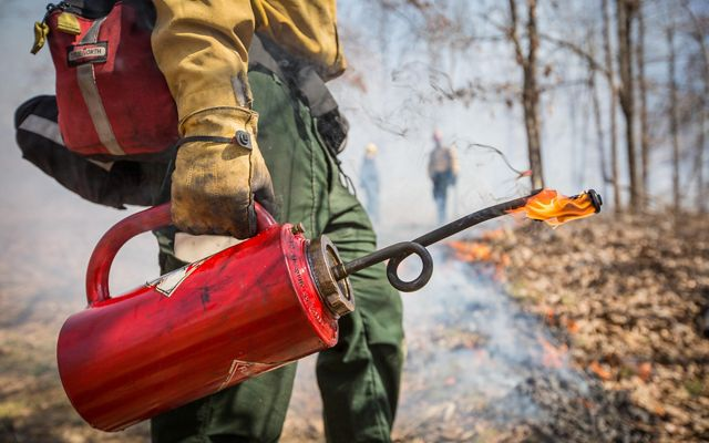 Close cropped view of a red drip torch being held by a TNC fire practitioner. The large torch has a barrel shape with a handle. A long, thin nozzle dispenses burning fuel to ignite fires.