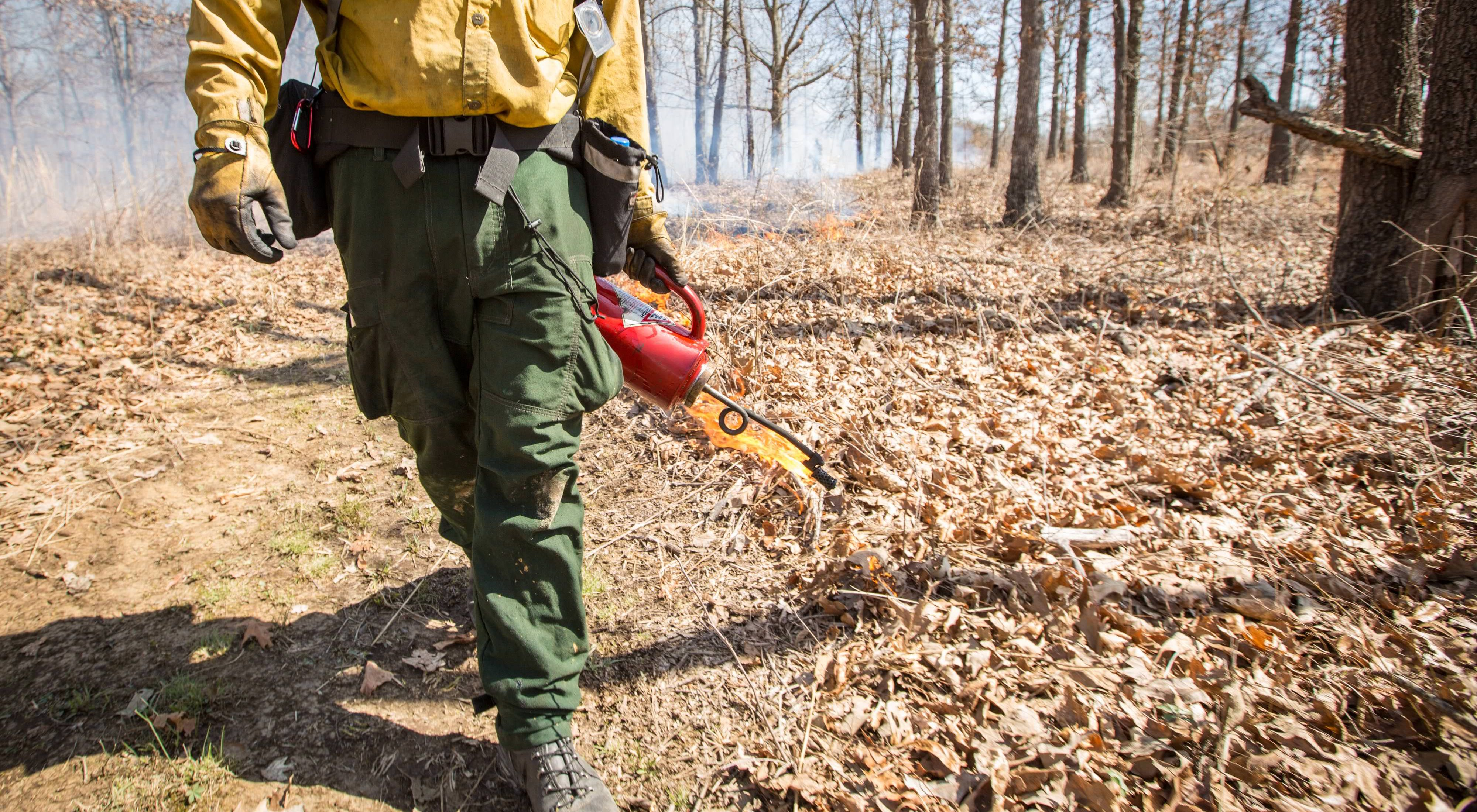Fire personnel walking with a drip torch.