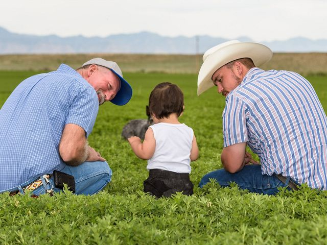 A farmer, his son and grandson sit in a green field.