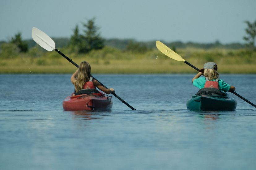Two children in kayaks enjoy Long Island Sound. The girl and boy float in calm blue water holding paddles that are both dipped to the right. An open marsh lines the horizon ahead of them.