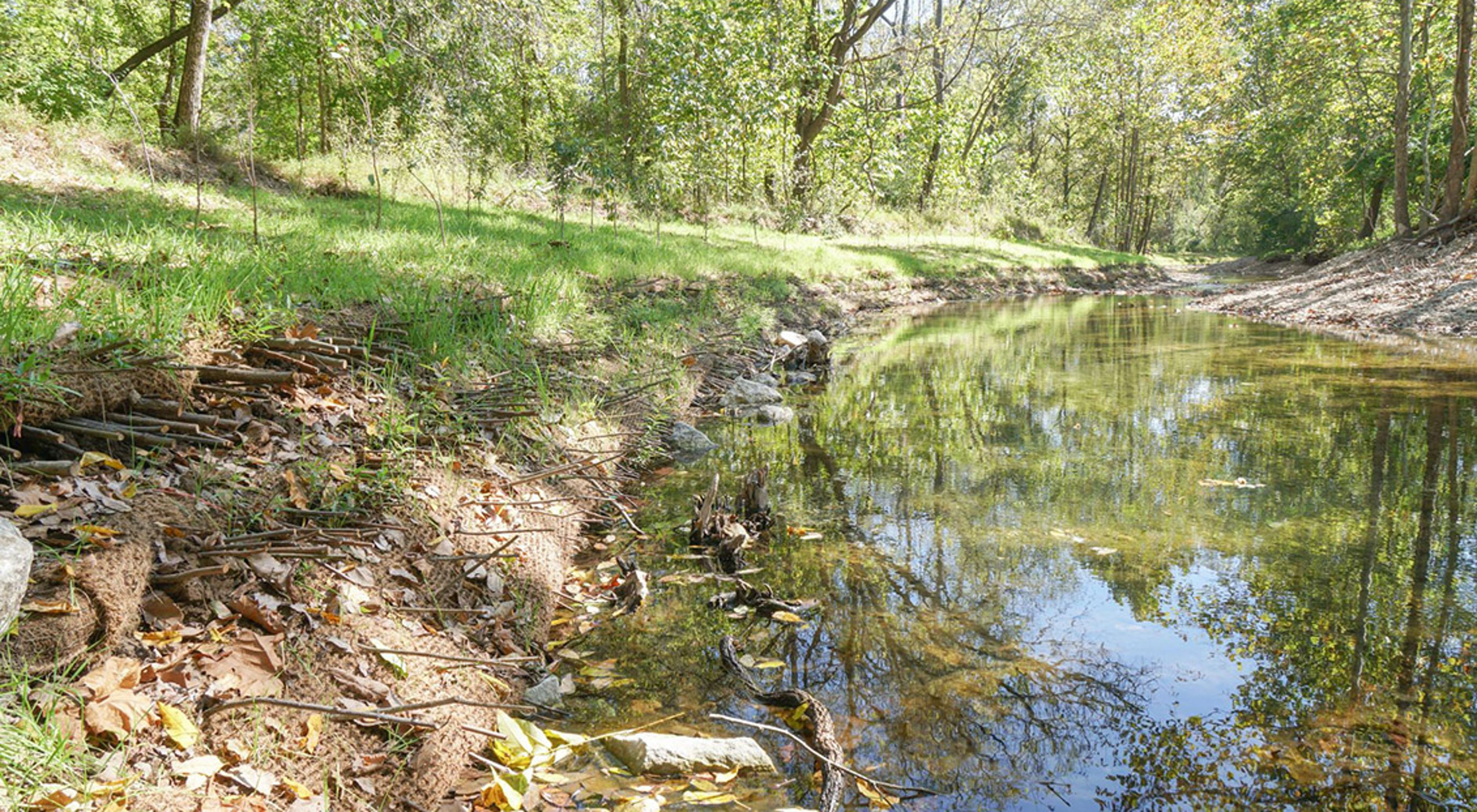 Small creek with a newly constructed restored streambank.