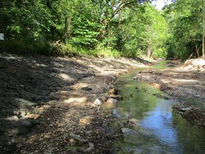 Eroding stream banks along Kiefer Creek in Castlewood State Park in St. Louis County.