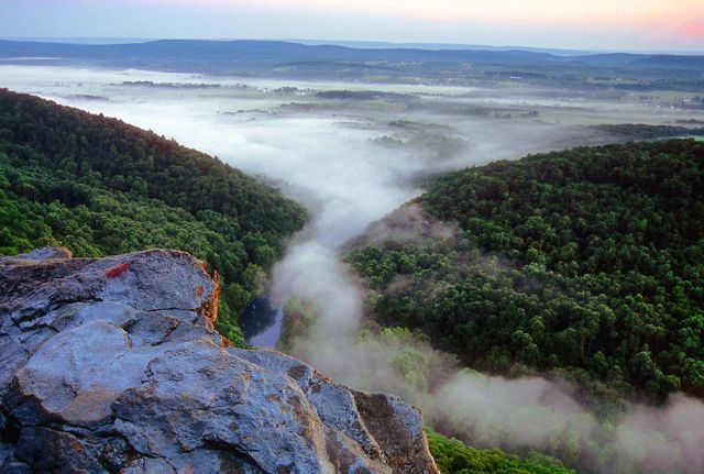 View from a rock outcropping of thick white mist rising up from the green forest in the valleyl below.