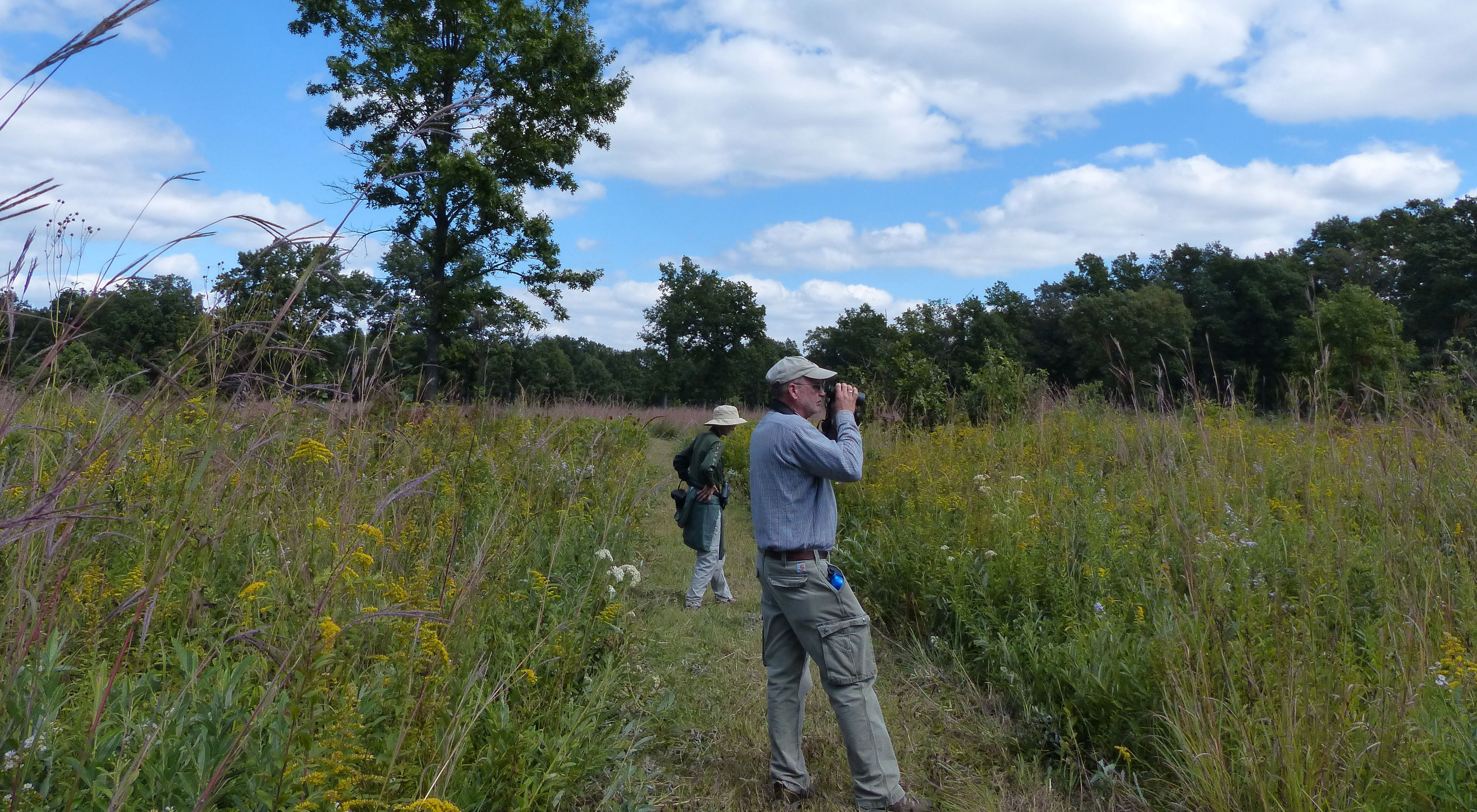 Hikers at Kitty Todd Preserve use binoculars to get a better look at the abundant wildflowers and wildlife.