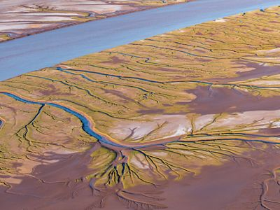 Aerial of Colorado River Delta