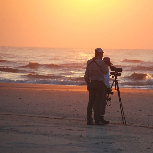 Travelers birdwatch on the beach in the early morning on Little St. Simons Island—a private, coastal island in Georgia.