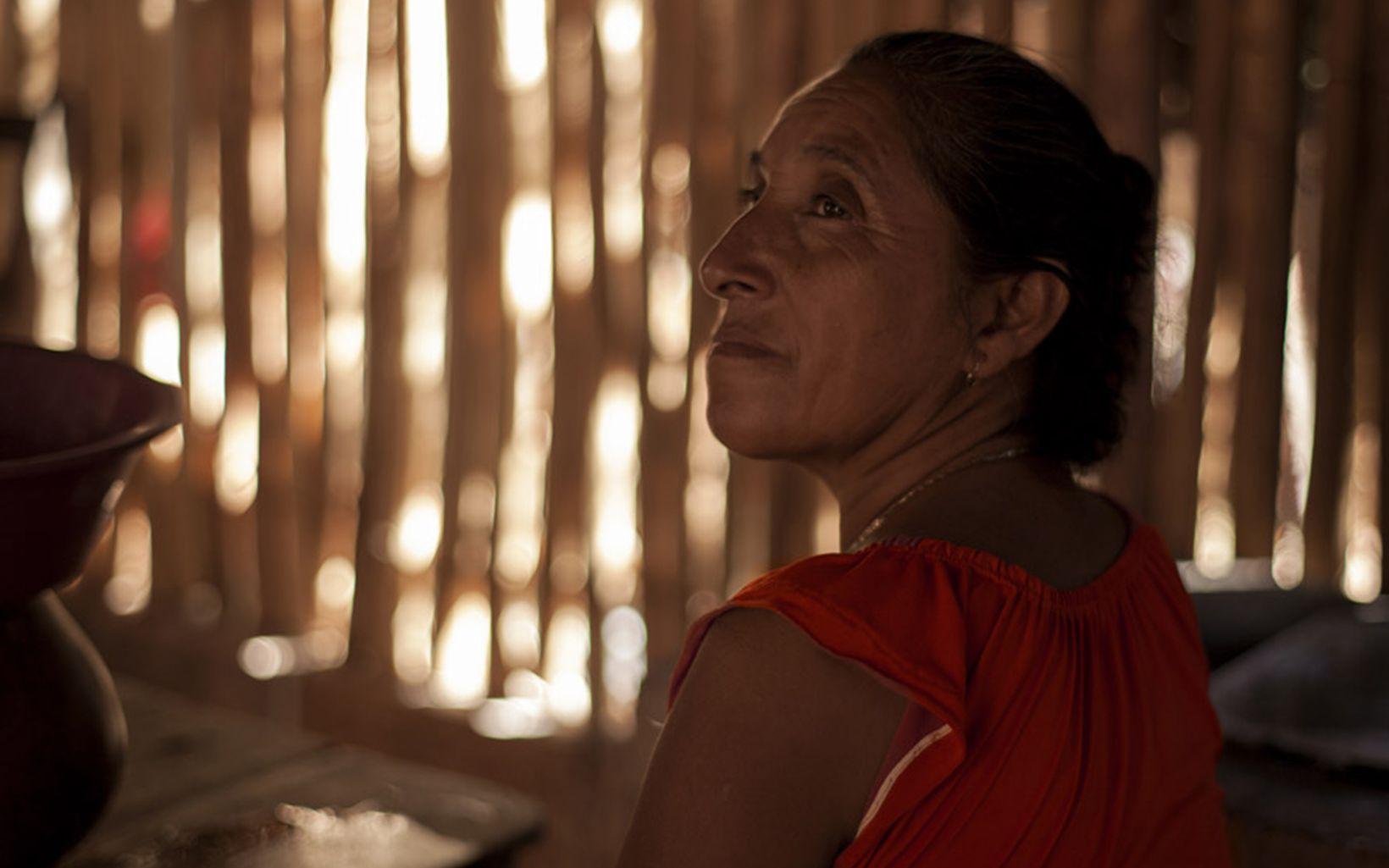 In the community of Liberato, Mexico, the incorporation of women is an opportunity to move forward on sustainable development and forestry conservation.