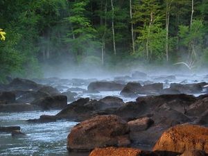 Water flows by rocks in a river surrounded by trees.