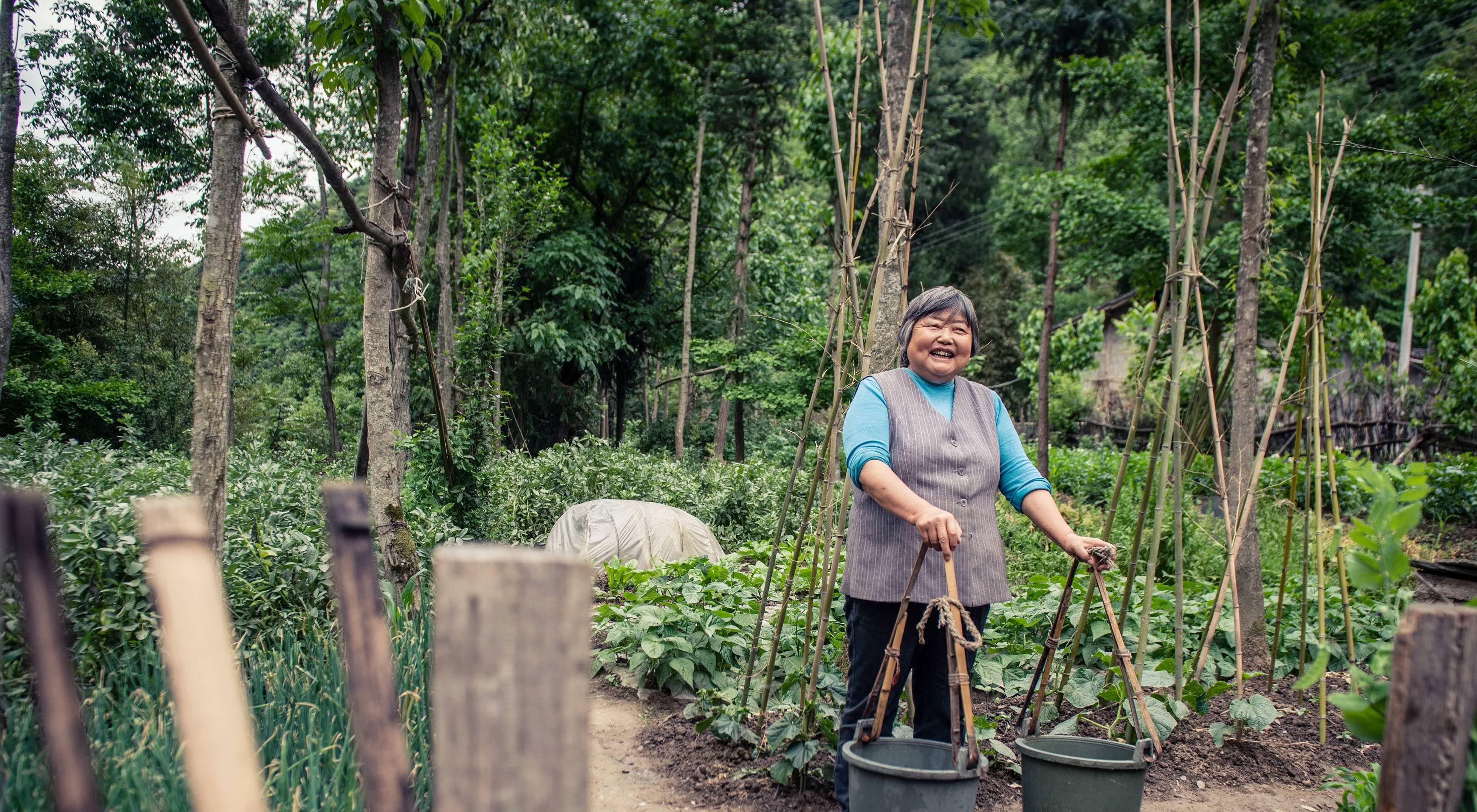 中國老河口保育區