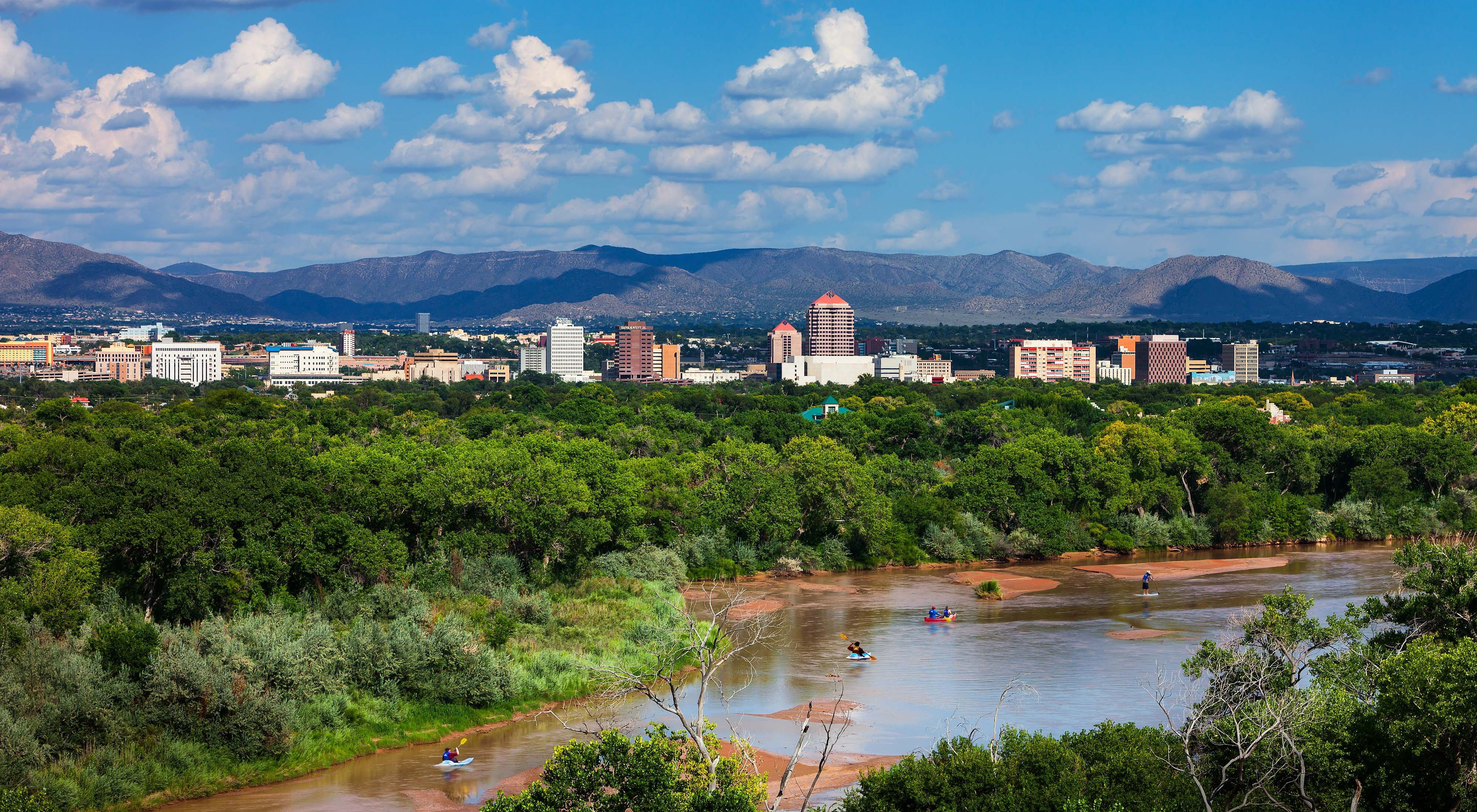 A view from a high vantage point looking over a muddy river with kayakers on it towards trees and a city skyline with mountains in the distance.