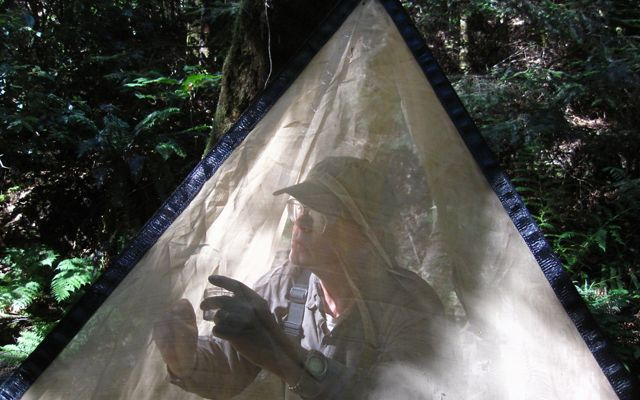Larry Serpa collecting specimens inside of an emergence tent.