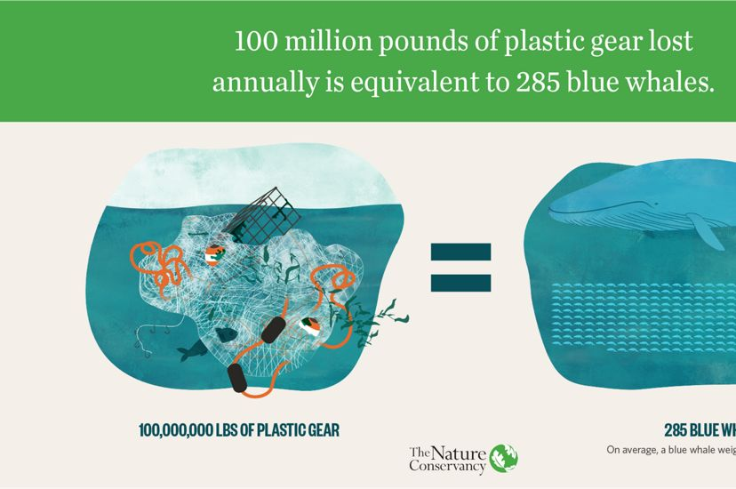 100 million pounds of plastic gear lost annually is equivalent to 285 blue whales.