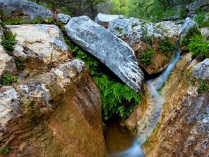 Water flows between large rock slabs in Love Creek..