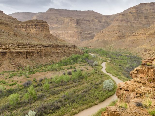 A river winds through a deep canyon lined with red cliffs.