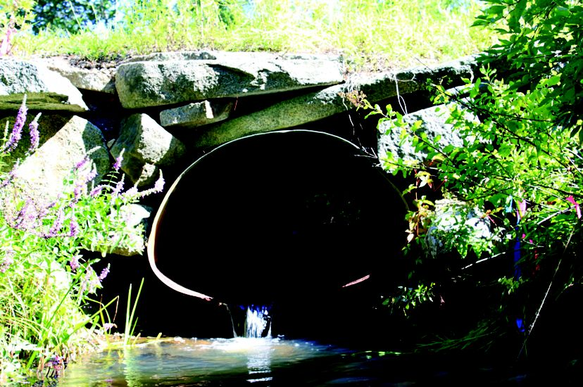A metal culvert pipe under a road.