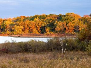 Red and yellow leaved trees surround a lake at sunset.