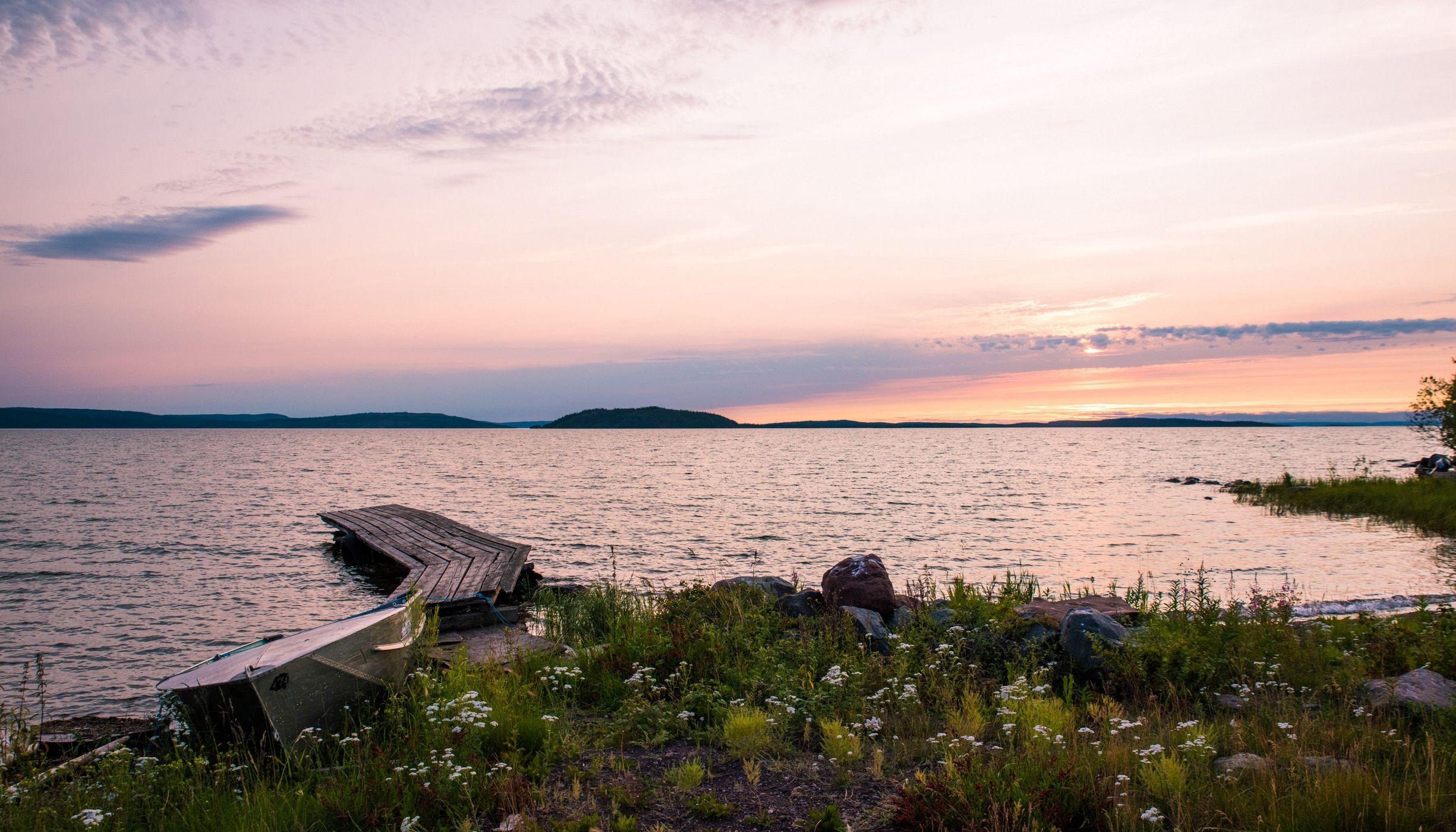 dock on lakeshore blooming with wildflowers at sunset
