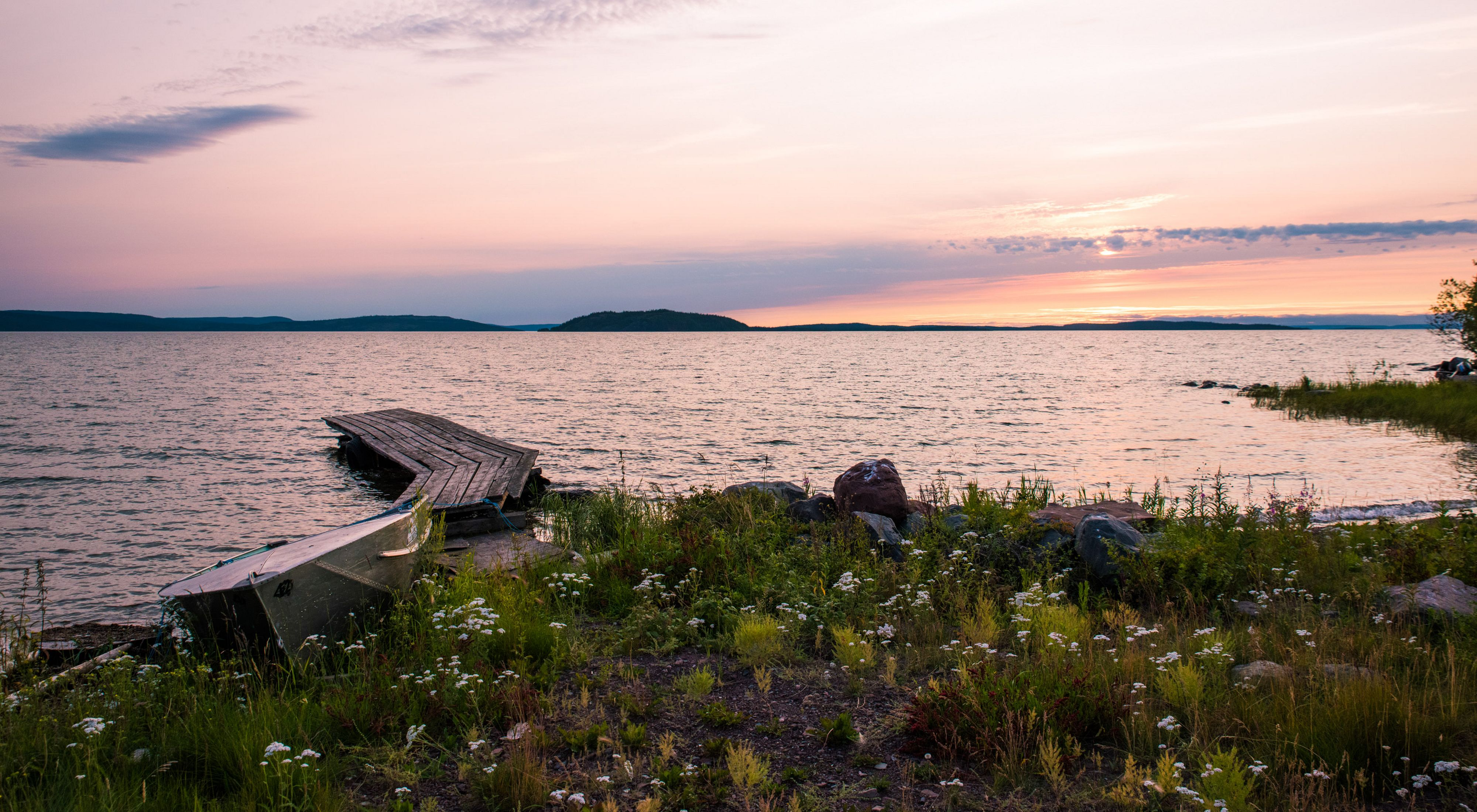 Wooden dock on a the shore of Great Slave Lake blooming with wildflowers at sunset