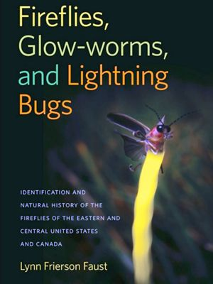 TNC supporter and firefly expert, Lynn Faust, wrote a book about these unique beetles.