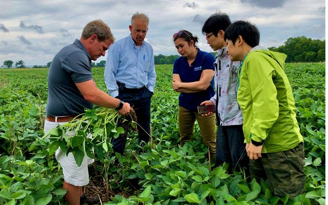 Maryland farmer Trey Hill points out visual evidence of healthy soil in his soybean field during a visit by Ying Li and Nan Zeng, leaders of TNC's China Agriculture team.