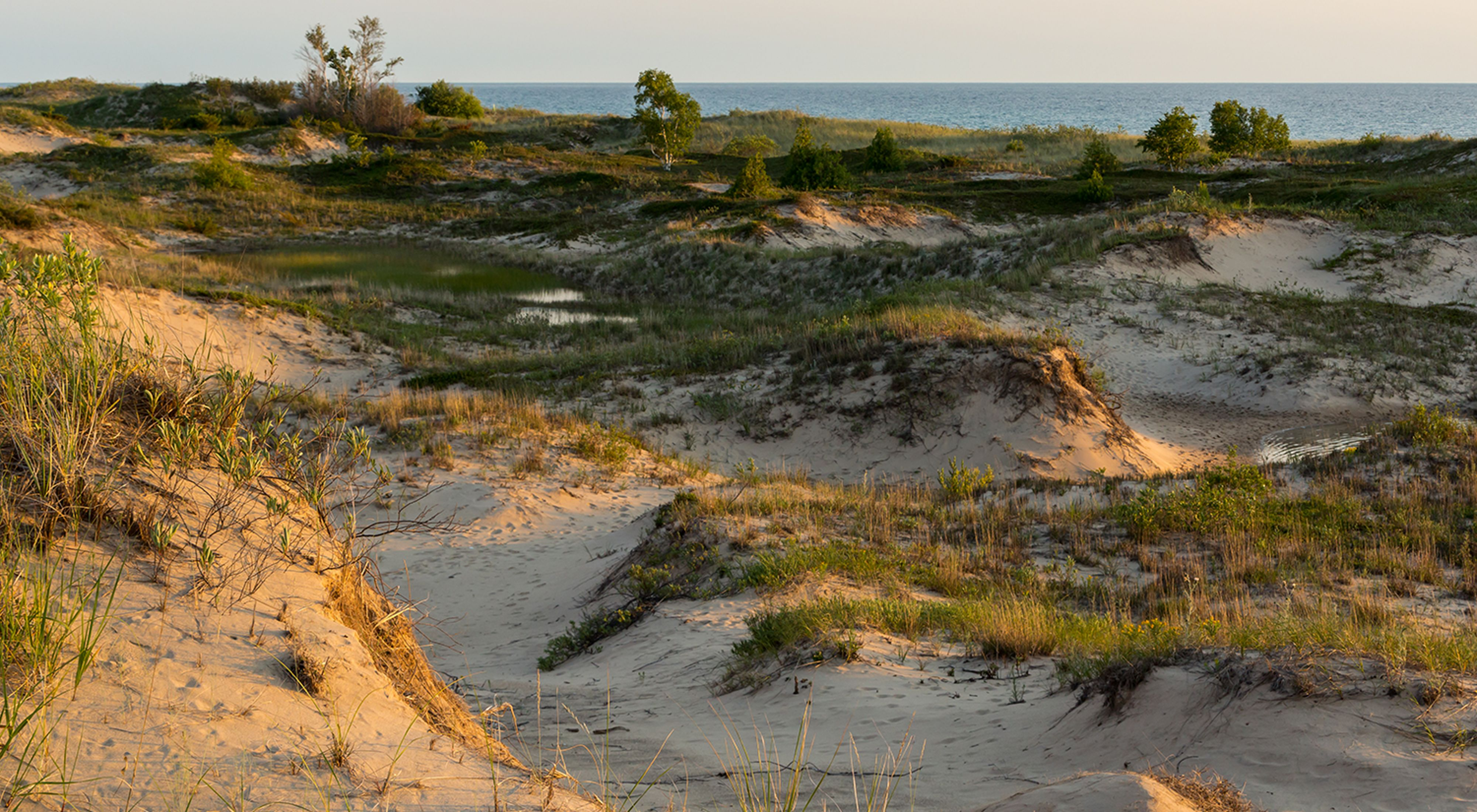 Rolling sand dunes with green grass along a lake shore.