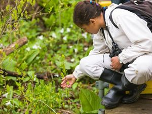 A young girl explores wildlife at the Nan Weston Nature Preserve at Sharon Hollow.