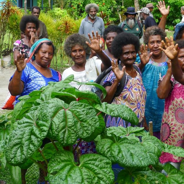 A group of women in Papua New Guinea wave.