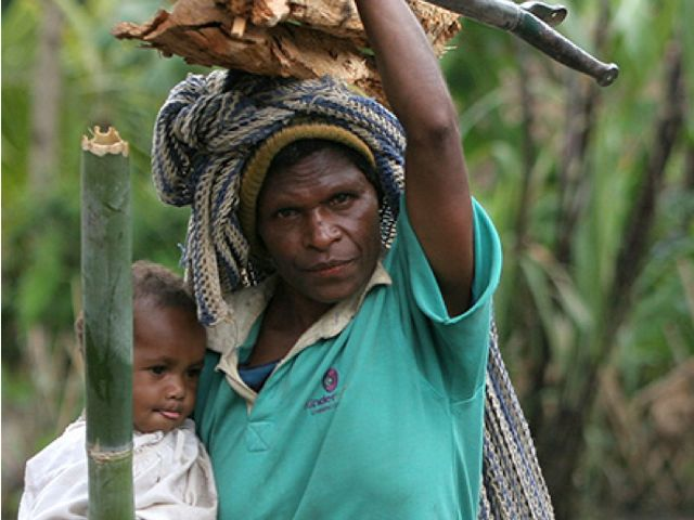 A woman carries firewood home to use for cooking the family meal.