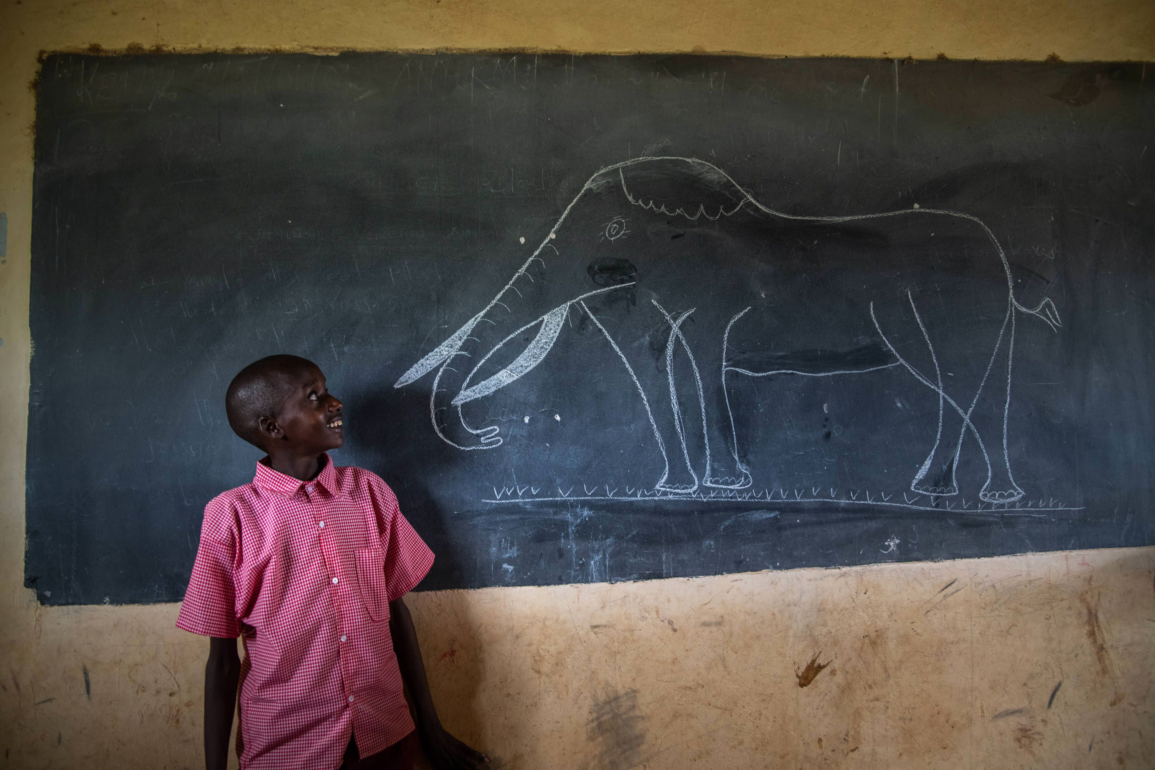 a boy stands next to a chalk board with a drawing of an elephant on it