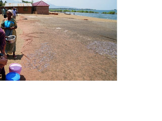 A stop at a village on Lake Tanganyika where the group learned about sustainable fishing practices.