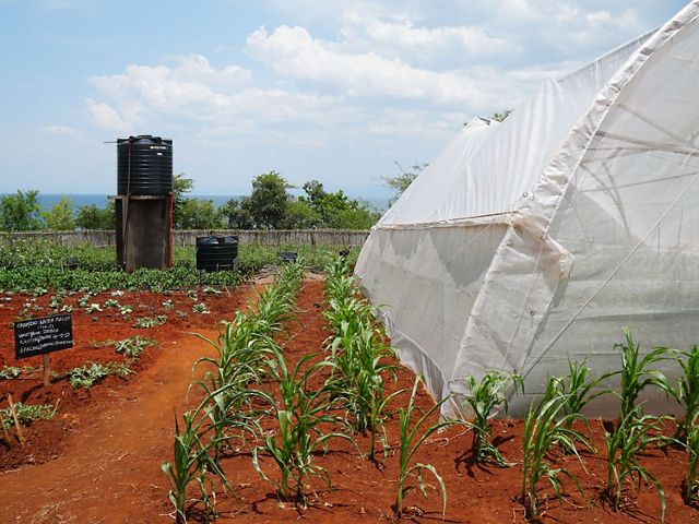 Conservation Smart Agriculture sites, like this one, demonstrate and test different techniques to improve crop yields and reduce sediment loss.