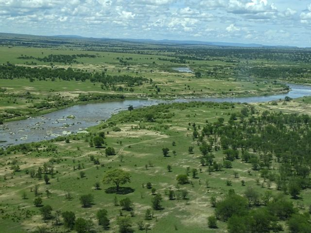 Northern Serengeti plains near the Kogatende Airstrip.
