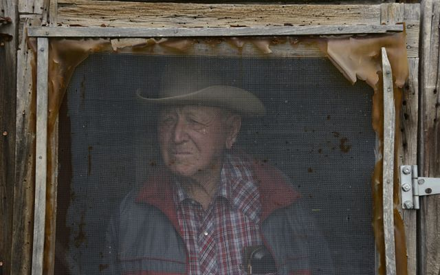 A weathered rancher in plaid stares out his screened window