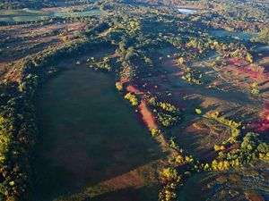 Aerial view of prairie forest border region in fall.