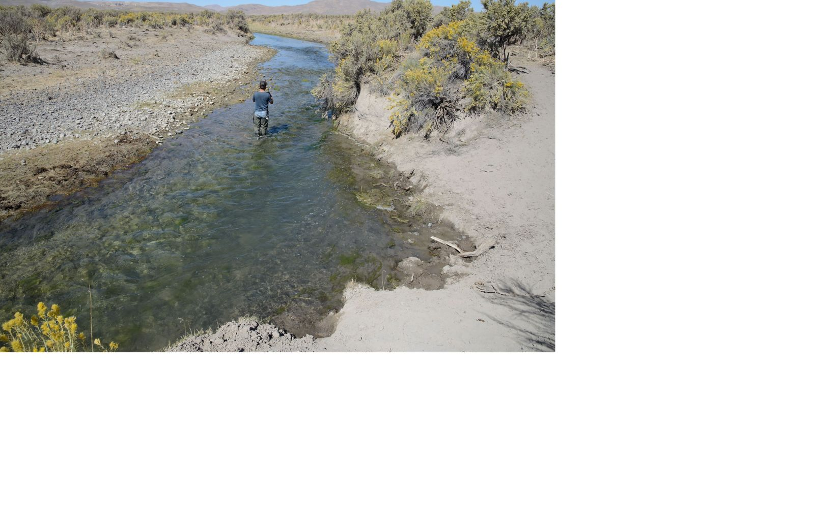 Perennial streams like Maggie Creek flow year-round because of groundwater inputs.
