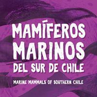 Esta nueva y completa guía de campo te invita a conocer las 39 especies de mamíferos marinos que se encuentran en el sur de Chile.