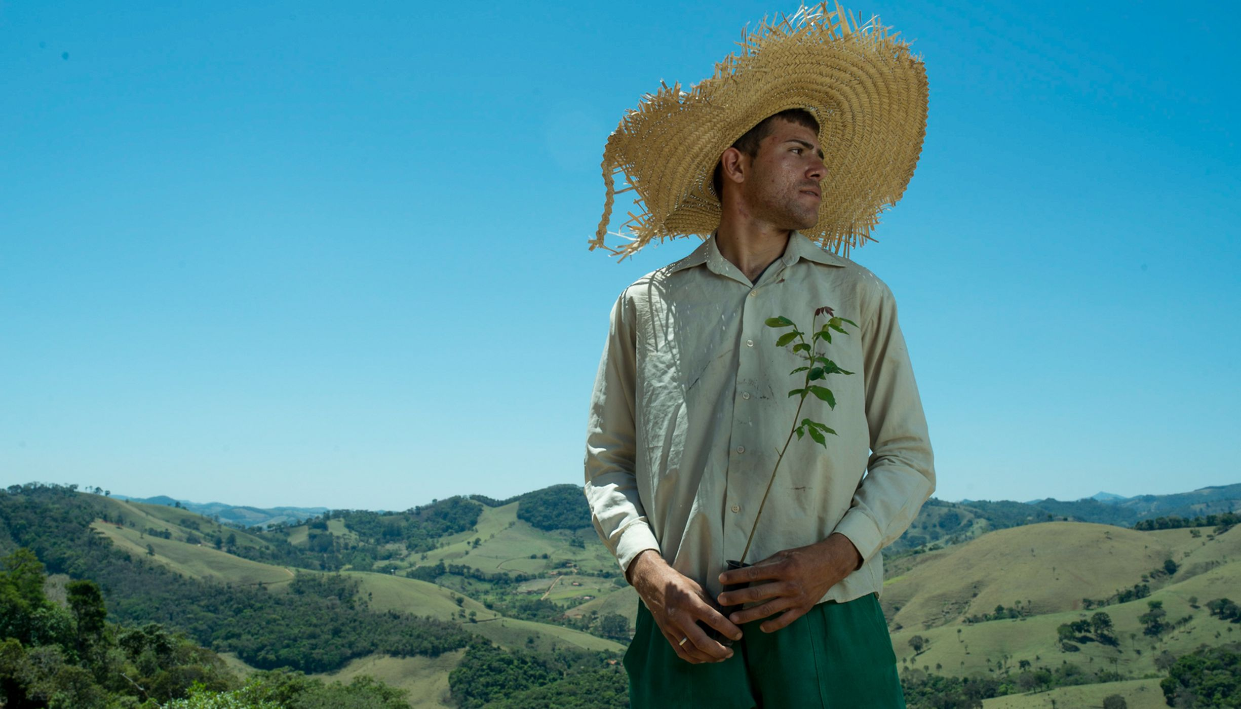 Vinicius Uchoa, a local tree planter, is helping reforest the Mantiqueria Range of Brazil's much-depleted Atlantic Forest.